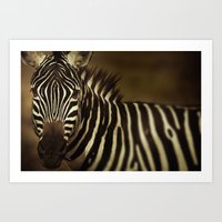striped Art Prints featuring Striped by DIEGO ARROYO