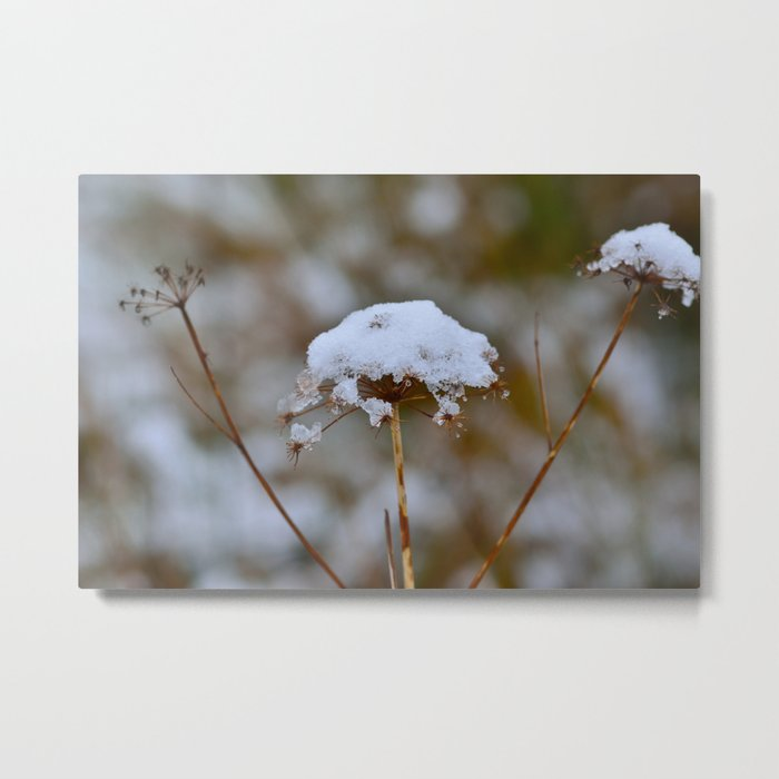 Snow Fall Metal Print