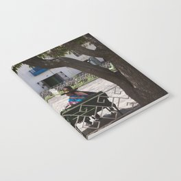 Peruvian Lady Notebook