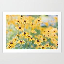 Sunny Disposition - Field of Wildflowers Photography Kunstdrucke