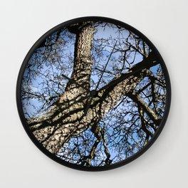 WINTER PEAR TREE Wall Clock