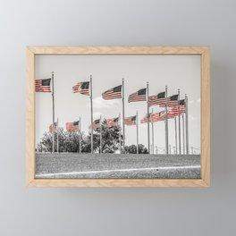 America the Beautiful Framed Mini Art Print