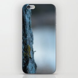 Camoflauge  iPhone Skin