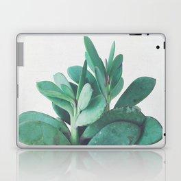Crassula Laptop & iPad Skin