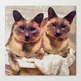 Siamese if you please Canvas Print