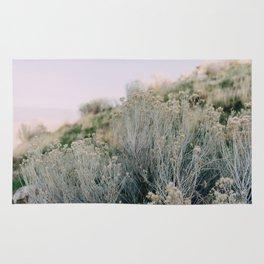 Desert Blush Rug