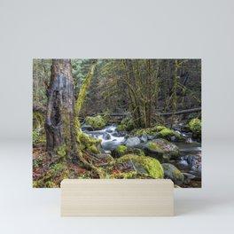 Alongside the French Pete Creek Mini Art Print