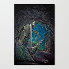 Nature 04 Canvas Print