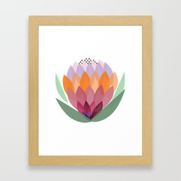 South African King Protea flower Framed Art Print