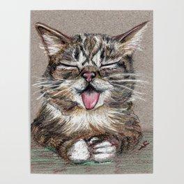 Cat *Lil Bub* Poster
