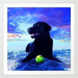 Ziggy Black Labrador Art Print