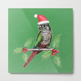 Christmas green cheeked conure Metal Print