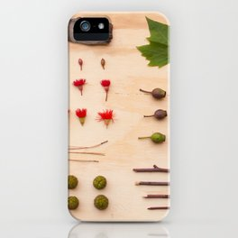 Melbourne Park Study iPhone Case