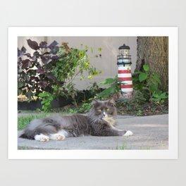 Sassy the Cat Relaxing Art Print