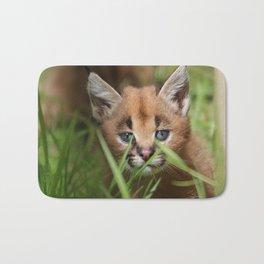 caracal kitten Bath Mat