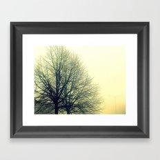Foggy Morning 1 Framed Art Print