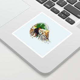Nautilus Porno