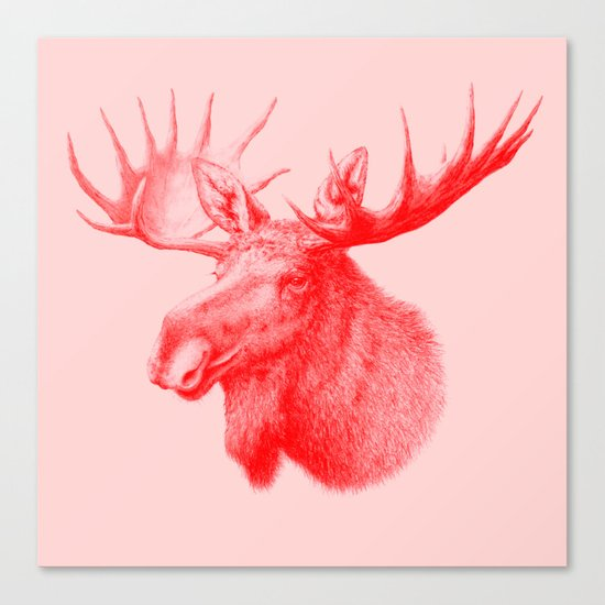 Moose red Canvas Print