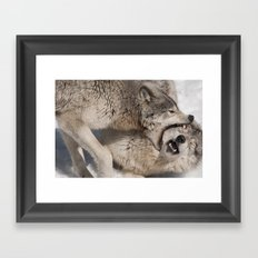 Acupuncture - Timber Wolves Framed Art Print