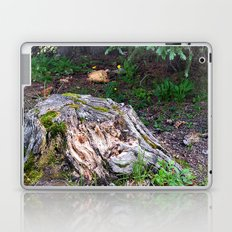Spread Out Laptop & iPad Skin