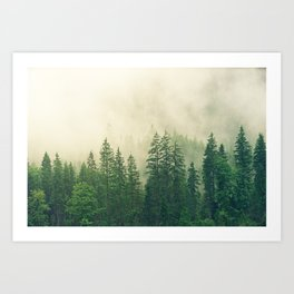 Majestic Forest Art Print
