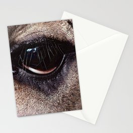 I Am The Same As You Stationery Cards