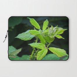 Blackberry Leaves Laptop Sleeve