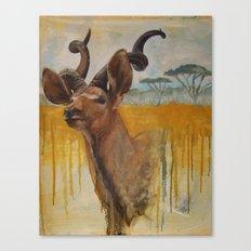 Greater Kudu (Tragelaphus strepsiceros)  Canvas Print