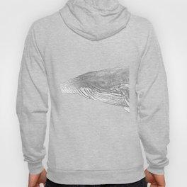 Grey Humpback whale portrait Hoody