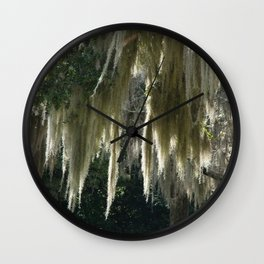 Spanish Moss in the Sunshine Wall Clock