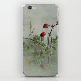 canvas_still-life_001 iPhone Skin