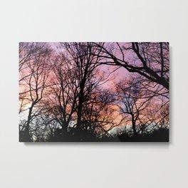 Pink Nature Metal Print