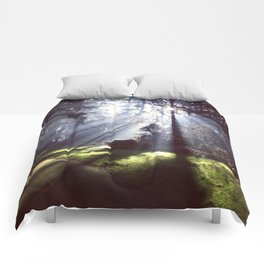 Sun Beams Comforters