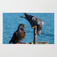 Drinking Pigeons Rug