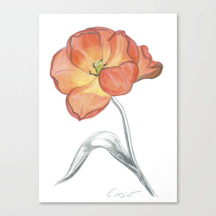 Tulip 05 Botanical Flower Canvas Print