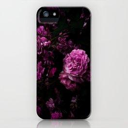 Grimhilde iPhone Case
