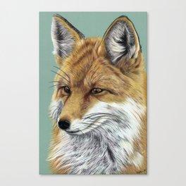 Fox Portrait 01 Canvas Print