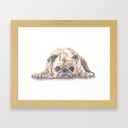 Its a Dogs Life Framed Art Print