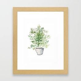 Christmas Tree in Galvanized Bucket Framed Art Print