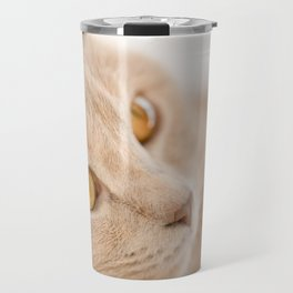 Dreaming cat Travel Mug