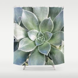 Succulent Photography | Nature | Green Cactus | Floral | Art Print Shower Curtain