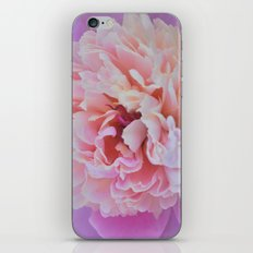 Raspberry Sorbet iPhone & iPod Skin