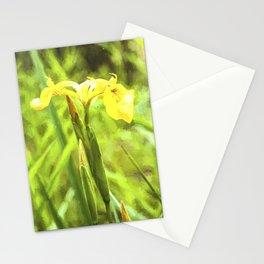 Yellow Marsh Iris Stationery Cards