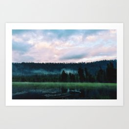 Pond Mist Art Print