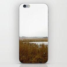The Salt Marsh iPhone & iPod Skin