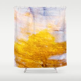Indian Summer 4 Shower Curtain