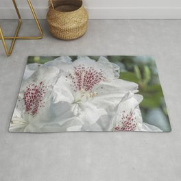 beautiful white flowers in the rhododendron park Rug