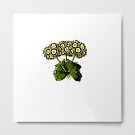 Magical flora #14 Metal Print