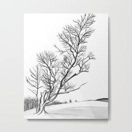 Fractured Winter Metal Print