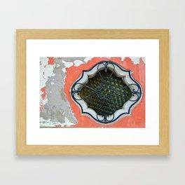 Burano Window Framed Art Print